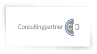 consulting partner